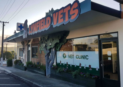 current-exteria-lynfield-vets-33333344